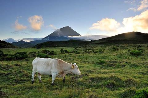 15 daagse Eilandhoppen Azoren Compleet