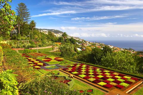 8 dg combinatiereis Funchal en landelijk Madeira